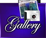 gallery-hmIcon