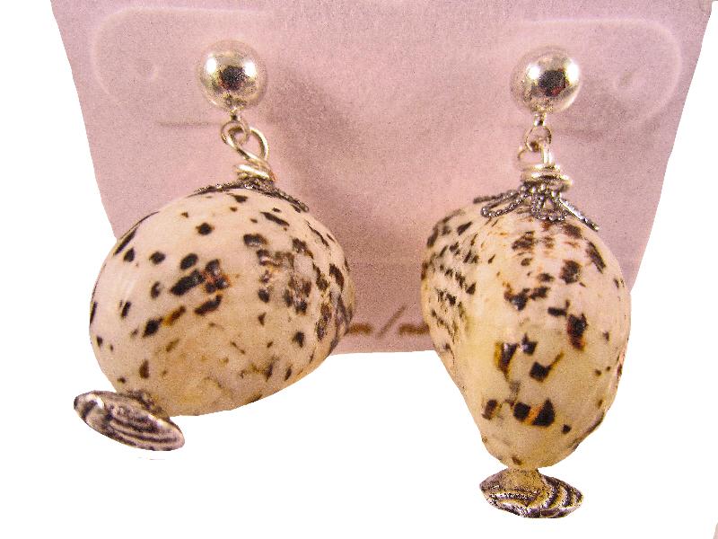 Beach shell earrings