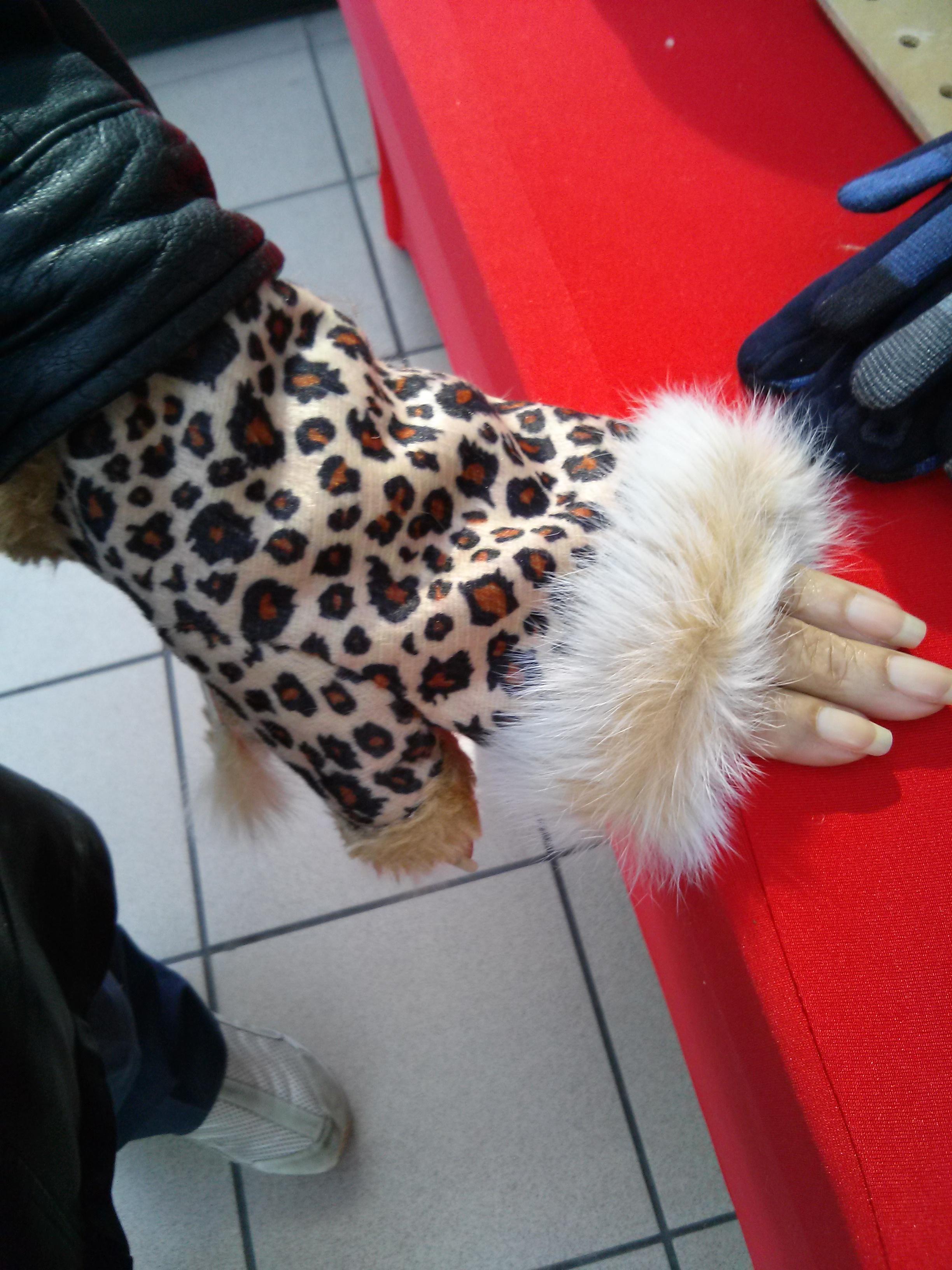 Leopard Print Fingerless Gloves